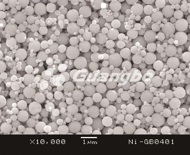 Ni-GB0401
