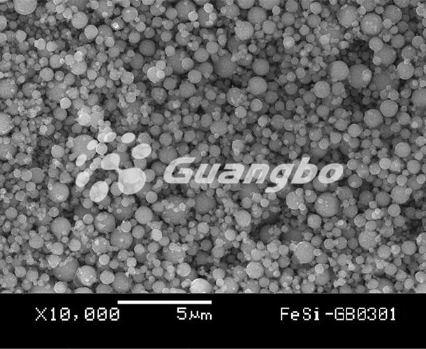 FeSi-GB0301
